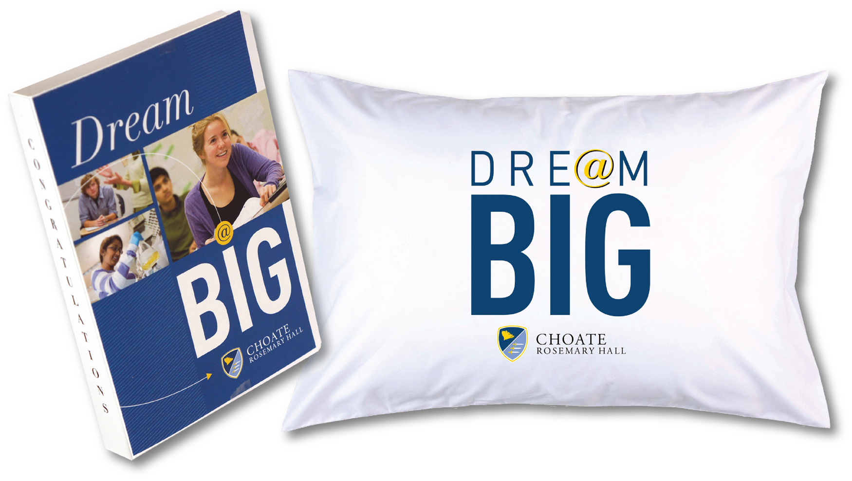 Swag Ideas for College Students Pillow